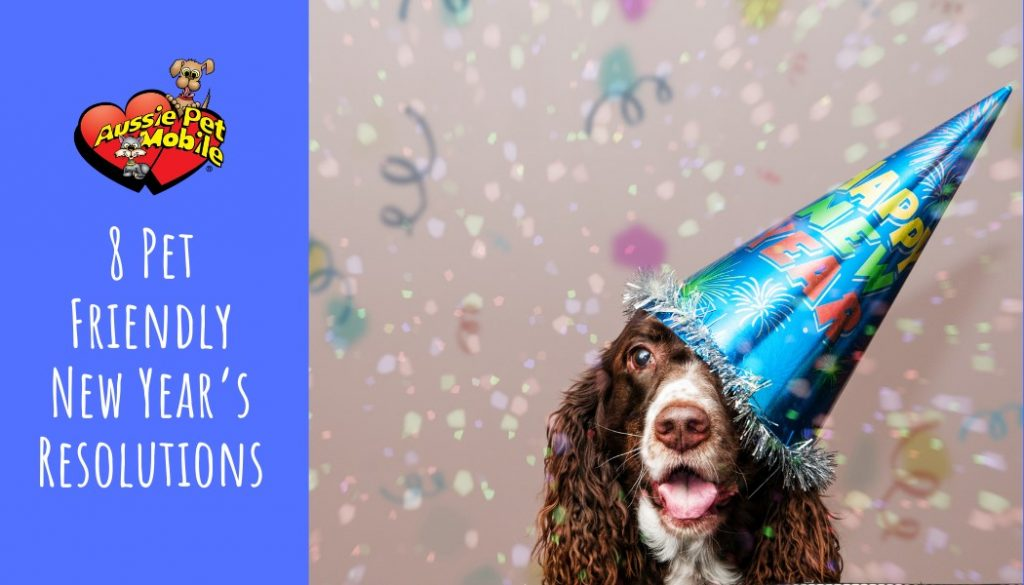 8 Pet Friendly New Year's Resolutions