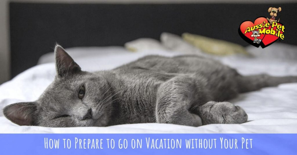 How to Prepare to go on Vacation without Your Pet