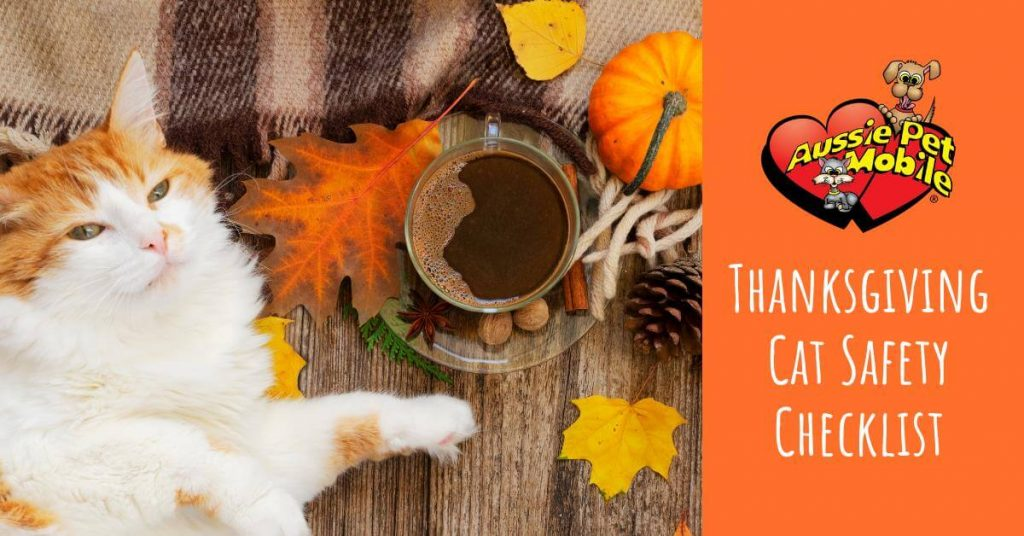 Thanksgiving Cat Safety Checklist