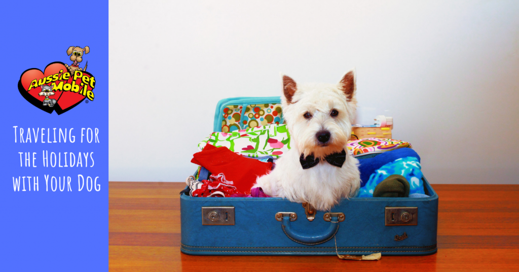 traveling for the holidays with your dog 12-19