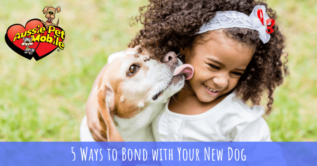 5 Ways to Bond with Your New Dog