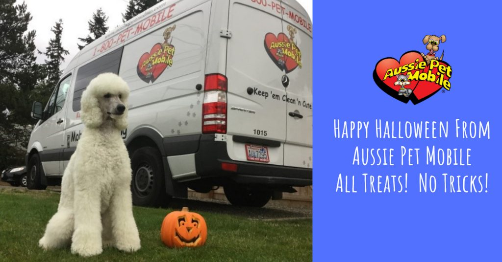 Happy Halloween From Aussie Pet Mobile All Treats No Tricks