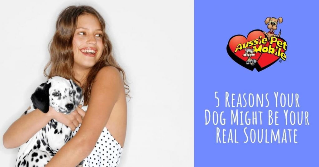 5 Reasons Your Dog Might Be Your Real Soulmate