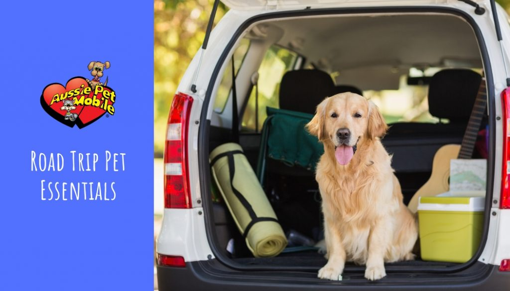 Road Trip Pet Essentials May 2021