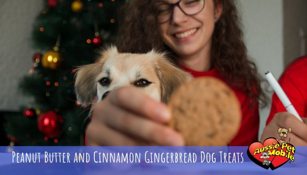Peanut Butter and Cinnamon Gingerbread Dog Treats Dec 2020