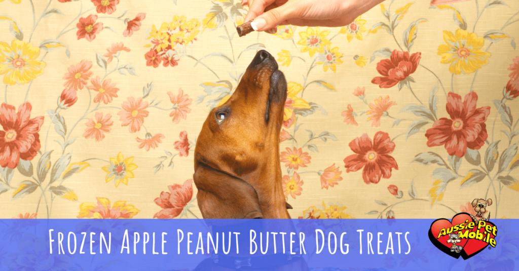 Frozen Apple Peanut Butter Dog Treats