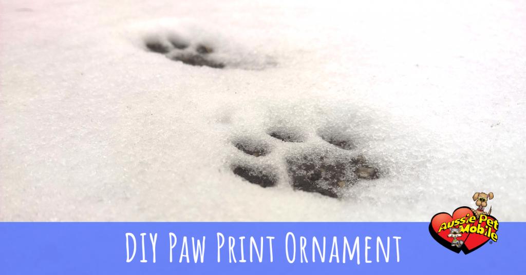 DIY Paw Print Ornament