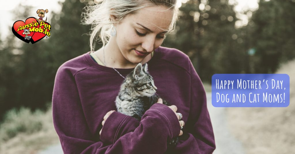 Happy Mother's Day, Dog and Cat Moms